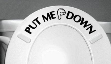 toiletseatupdown-opinionatedmale-com